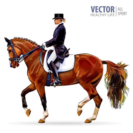 Equestrian sport. Horsewoman jockey in uniform riding horse outdoors.