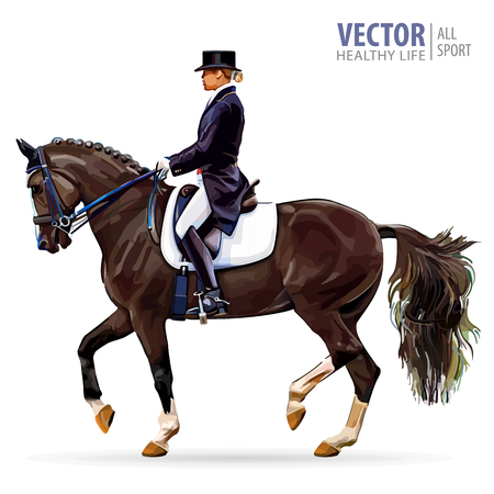 Equestrian sport. Horsewoman jockey in uniform riding horse outdoors. Dressage. Isolated on white background. Jockey on horse. Bay horse. Vector illustration.