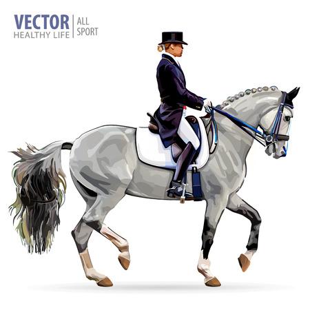 Paardensport. Amazone jockey in uniform rijpaard buitenshuis. Dressuur. Geïsoleerd op witte achtergrond Jockey te paard. Baaipaard. Vector illustratie.