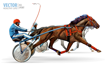 Jockey and horse. Two racing horses competing with each other. Race in harness with a sulky or racing bike.