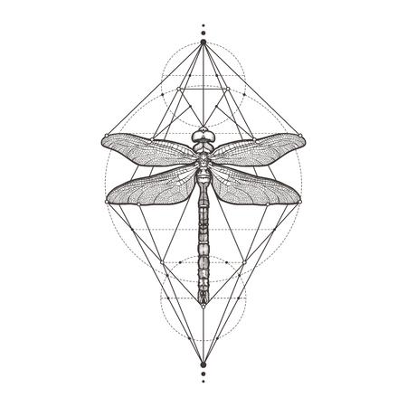 Black dragonfly, isolated on white background. Illustration