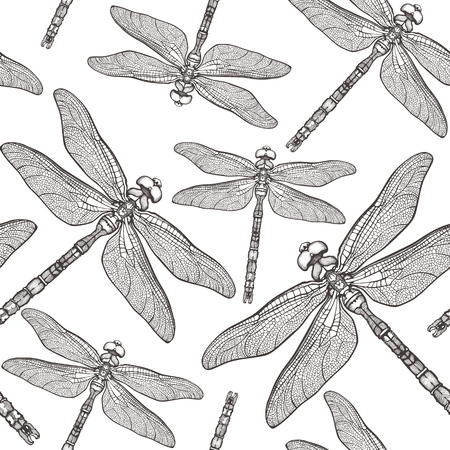 A Seamless Pattern with dragonfly. Çizim
