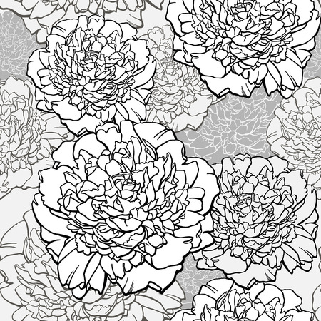 Peonies. T-shirt design. Sketched flower print in monochrome colors - seamless background. Hand-drawn vector illustration.