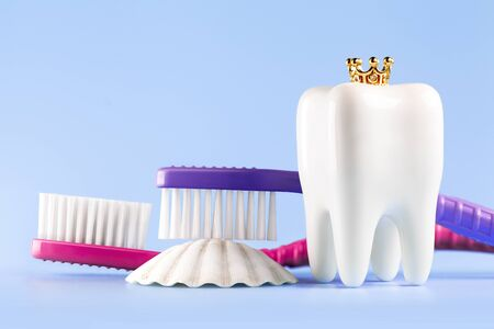 Dental model and toothbrushs on blue background, concept image of dental background. Crown. Seashell. Dental hygiene. Banner with copyspace 스톡 콘텐츠