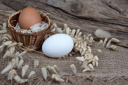 Easter white and brown eggs in wicker basket and dry herb on natural burlap background. Eco friendly folk style. Easter composition. Stock Photo