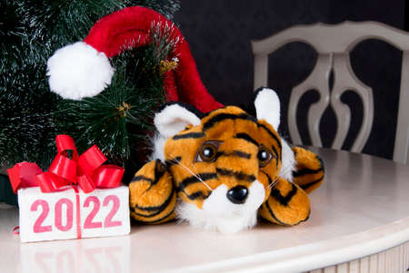 Tiger symbol of 2022 year and gift box with text 2022 on white table near Christmas tree in room.