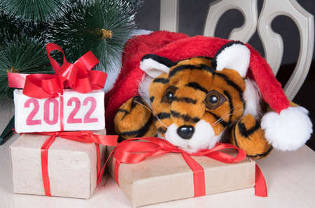 Tiger symbol of 2022 year and gift box with text 2022 on white table near fir-tree in room.