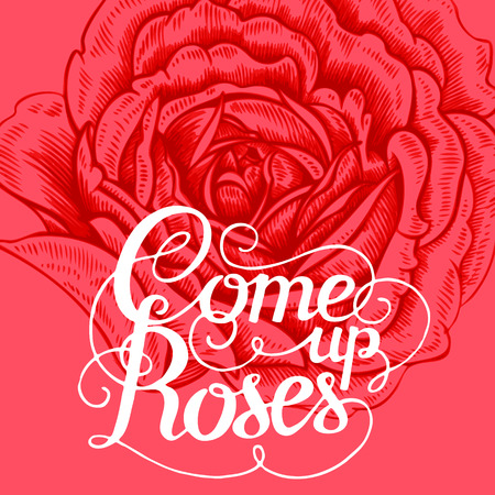 locution: The phrase Come up roses. Ink hand lettering on a background with the image of a red rose flower. Vector floral illustration. Designed for wedding greetings, invitations, wishes.