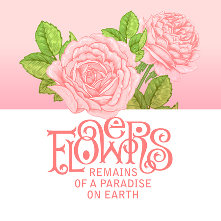 locution: The phrase Flowers remains of a paradise on earth. Ink hand lettering on a background with the image of a pink roses flowers. Vector floral illustration.