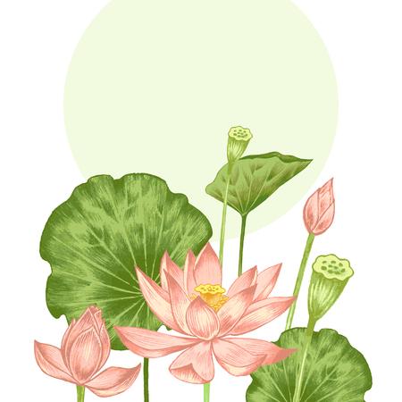Vektor. Illustration mit exotischen Blumen in der Kunst Aquarellstiften. Lotus-Teich. Retro. Vintage-Stil. Standard-Bild - 47617823