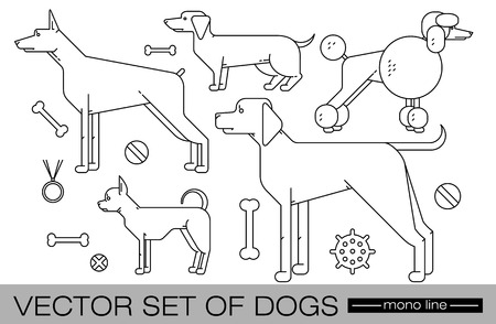 chihuahua dog: Set of individual figures of dogs of different breeds isolated on a white background and related subjects. illustration of a modern design mono line.