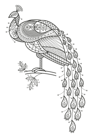 peacock pattern: Vector illustration decorative bird peacock on white background. Fashion trend of adult coloration. Bird peacock with elements oriental motif. Black and white bird peacock. Modern vector design. Illustration