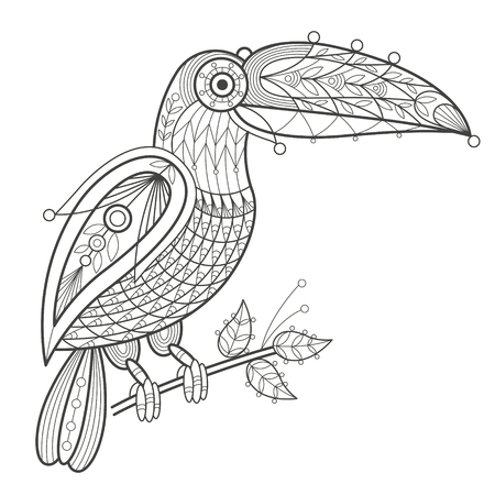 coloration: Vector illustration decorative toucan on white background. Fashion trend of adult coloration. Bird toucan vector with elements oriental motif Turkish cucumber. Black and white. Modern vector design.