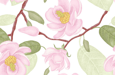 magnolia flower: Seamless vector floral pattern. Illustration magnolia Victorian style. Vintage luxury decoration magnolia. Series floral design unique technique. Magnolia tree branch with flowers on white background.