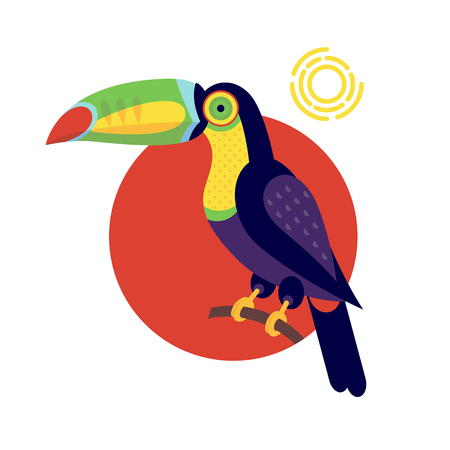 simplified: Toucan. Vector image of a flat figure bird. Simplified design of bird from the wild. Graphic illustration of colored exotic bird isolated on white background. Unusual bird.