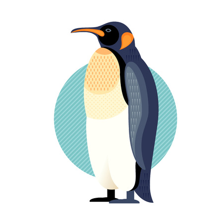 water bird: Penguin. Vector image of a flat figure bird. Simplified design of bird from the wild. Graphic illustration of colored exotic bird isolated on white background. Water bird.