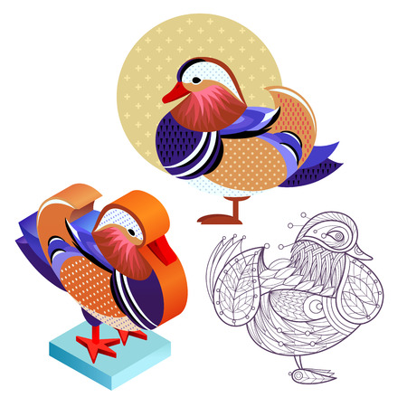 Birds Mandarin duck. Flat icon, template for adult coloring, isometric view. Set of vector birds in different unusual style. Illustration collection of images birds isolated on white background.