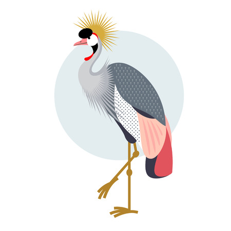 crowned: Bird Crowned Crane. Decorative vector bird - flat icon. Illustration bird isolated image on a white background.