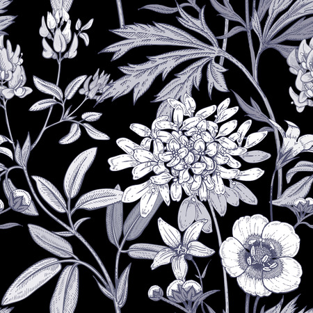 Illustration of wild field flowers buttercups, alfalfa, bell. Vector seamless pattern. Floral ornament. Vintage. White graphics on a black background.