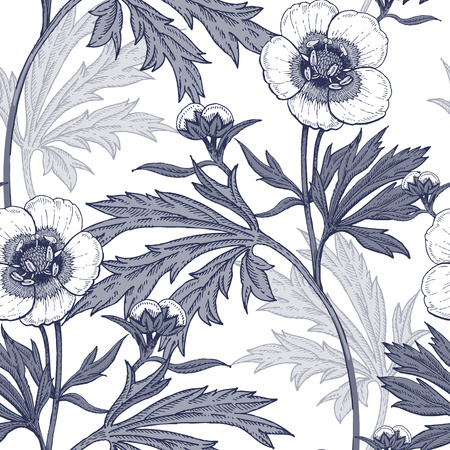 field flowers: Illustration of wild field flowers buttercups.
