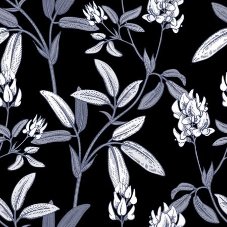 alfalfa: Illustration of wild field flowers alfalfa. Vector seamless pattern. Floral ornament. Vintage. White graphics on a black background. Illustration
