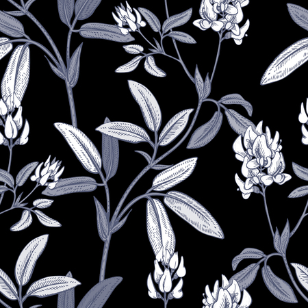 Illustration of wild field flowers alfalfa. Vector seamless pattern. Floral ornament. Vintage. White graphics on a black background. Illustration