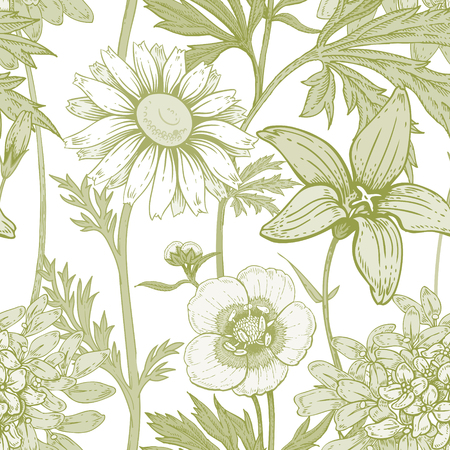 Illustration of wild field flowers buttercups, alfalfa, bell, chamomile on a white background. Vector seamless pattern. Floral ornament. Vintage.