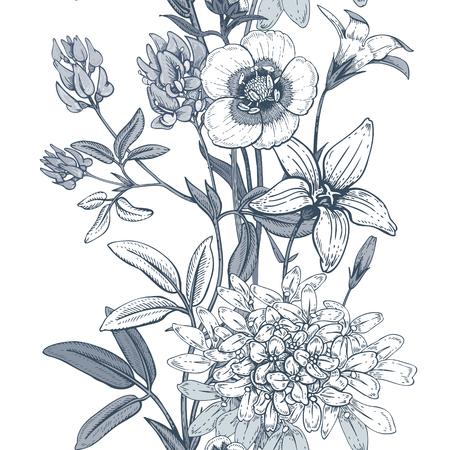 alfalfa: Illustration of wild field flowers buttercups, alfalfa, bell. Illustration