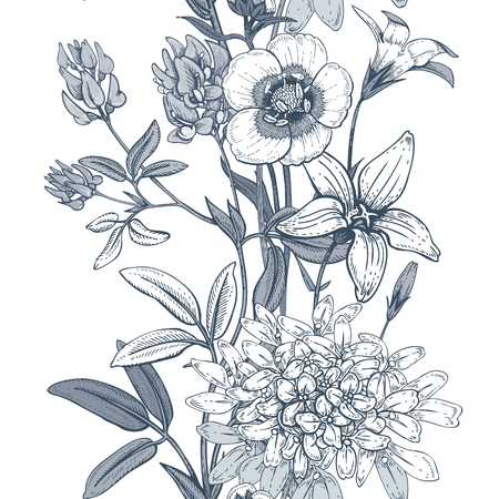 Illustration of wild field flowers buttercups, alfalfa, bell. Illustration