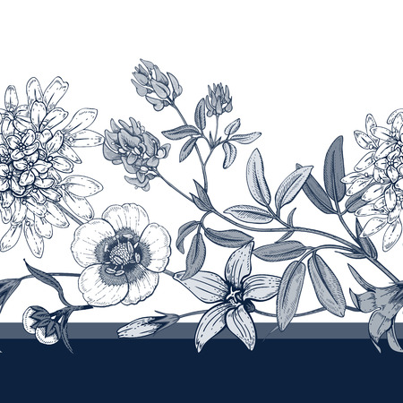 buttercups: Illustration of wild field flowers buttercups, alfalfa, bell. Vector seamless pattern. Floral ornament. Vintage. Black graphics on a white background.