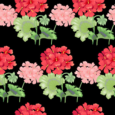victorian style: Black background with geranium flowers. Seamless pattern. Illustration victorian style. Vintage. Vector. Designs for textiles, fabrics, interior design, curtains, upholstery fabrics, paper, wallpaper. Illustration