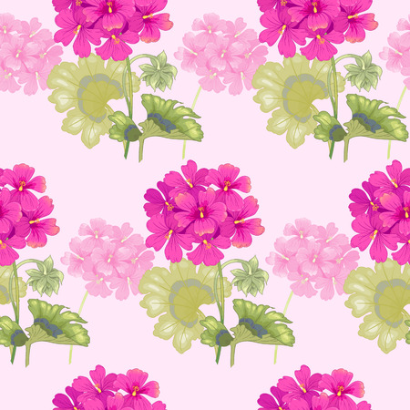 Background with geranium flowers. Seamless pattern. Illustration victorian style. Vintage. Vector. Designs for textiles, fabrics, interior design, curtains, upholstery fabrics, paper, wallpaper.