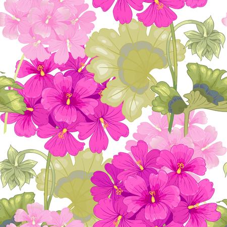 Weißer Hintergrund mit Geranien. Nahtlose Muster. Illustration viktorianischen Stil. Jahrgang. Vektor. Entwürfe für Textilien, Stoffe, die unter Design, Vorhänge, Möbelstoffe, Papier, Tapeten.