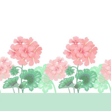 Weißer Hintergrund mit Geranien. Nahtlose Muster. Illustration viktorianischen Stil. Jahrgang. Vektor. Entwürfe für Textilien, Stoffe, Innenarchitektur, Vorhänge, Möbelstoffe, Papier, Tapeten.