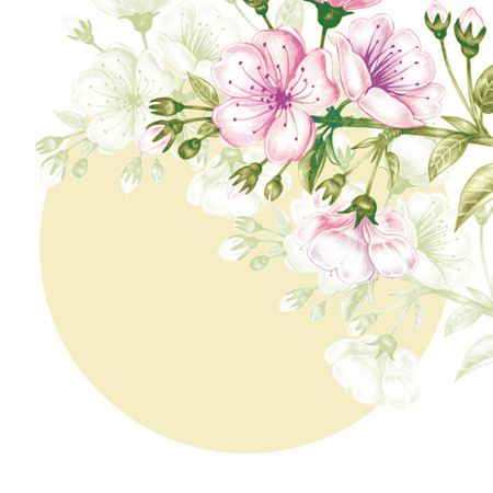 Illustration with flowering branch of cherry on white background. To create greeting cards, wedding invitations, congratulations. Vector.