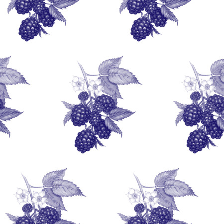 Vector seamless background. The branches of a blackberry with berries and flowers. Design for fabrics, textiles, paper, wallpaper, web. Vintage. Black and white.