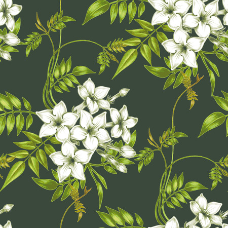Wektor bez szwu tła. Jasmine flowers.Design do tkanin, tekstyliów, papieru, tapety, www. Zabytkowe. Kwiatowy ornament. Ilustracje wektorowe