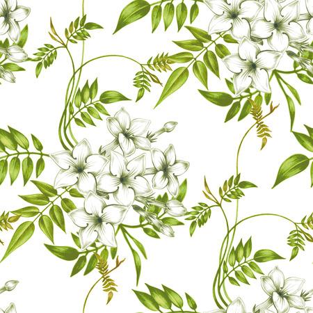 Fondo inconsútil del vector. Jasmine flowers.Design para las telas, textiles, papel, papel pintado, tela. Vendimia. adornos florales.