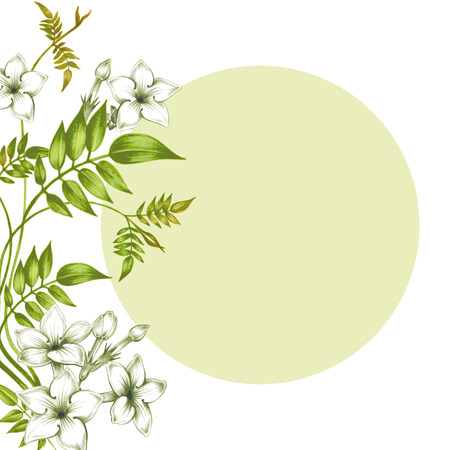 fleur de cerisier: Carte postale avec des fleurs de jasmin isol� sur fond blanc. Pour cr�er des cartes de v?ux, invitations de mariage, f�licitations. Vecteur.