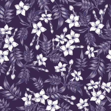 Vector seamless background. Jasmine flowers.Design for fabrics, textiles, paper, wallpaper, web. Vintage. Floral ornament. Black and white.  イラスト・ベクター素材