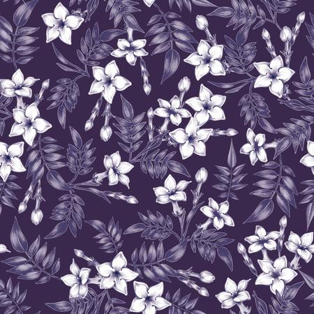 Vector seamless background. Jasmine flowers.Design for fabrics, textiles, paper, wallpaper, web. Vintage. Floral ornament. Black and white. Illustration