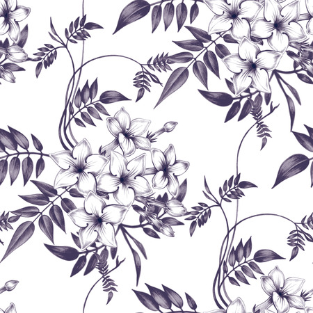 Vector seamless background. Jasmine flowers. Design for fabrics, textiles, paper, wallpaper, web. Vintage. Floral ornament. Black and white.