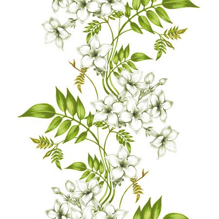 jardines flores: Fondo incons�til del vector. Jasmine flowers.Design para las telas, textiles, papel, papel pintado, tela. Vendimia. adornos florales. Vectores