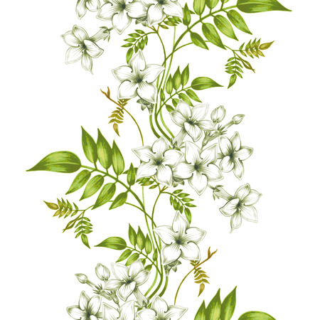 plant design: Vector seamless background. Jasmine flowers.Design for fabrics, textiles, paper, wallpaper, web. Vintage. Floral ornament. Illustration
