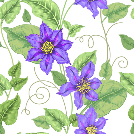 victorian style: Floral seamless pattern on a white background for fabrics, textiles, wallpaper, paper. Vector. Clematis flowers and ornamental berries. Design Victorian style. Illustration