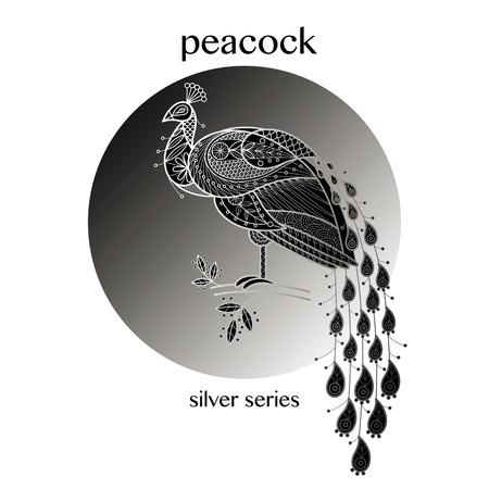 ornithology: Bird peacock. Vector illustration. Illustration