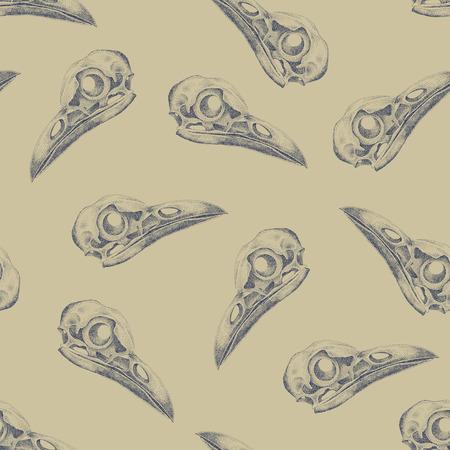 cranial skeleton: Vintage vector pattern with skulls raven.