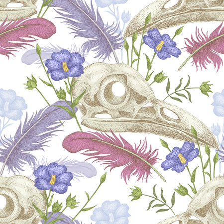cranial skeleton: Seamless pattern with skulls, feathers and flowers. Decorative composition on the theme of death on a white background.