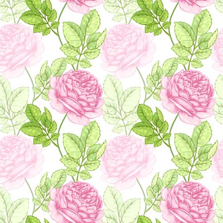 rose garden: Floral illustration with roses. Seamless pattern. Vector hand drawn design illustration.