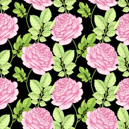 Ilustración floral con rosas. Patrón sin fisuras. vector dibujado a mano ilustración de diseño. Ilustración de vector